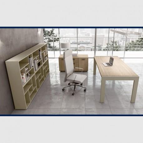Ufficio Direzionale Completo - 02